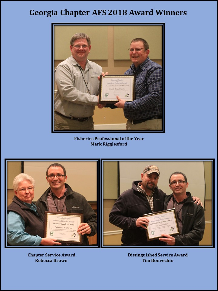 2018 Chapter Award Winners